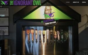 The Ignorant Owl @ The Ignorant Owl | Canton | Ohio | United States